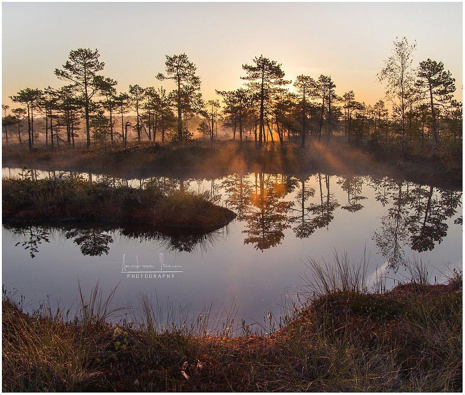Tere hommikust Eestimaa